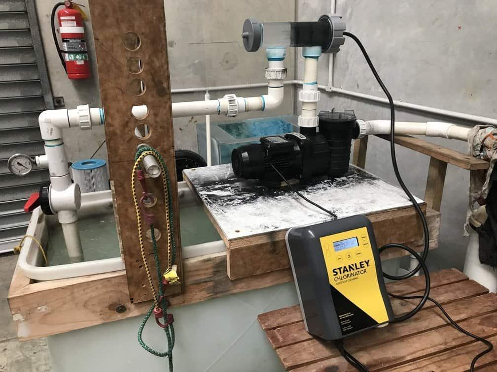 Stanley salt chlorinator on test